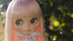 mim - brown eyes