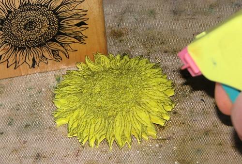 compressed sponge stamps 007