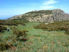 Crêtes de Marignana : descente dans la prairie vers Bocca a u Fussu