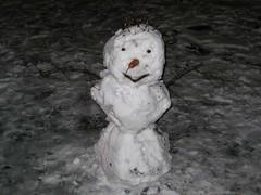 Фото снеговик