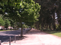 Walk from Campo Grande to Marques de Pombal  029 (Tom J Bettler) Tags: portugal walk lisbon campogrande marquesdepombal