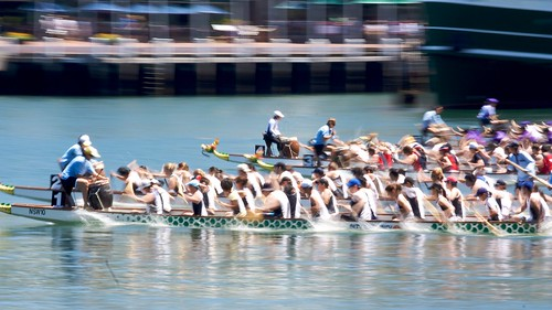 dragon boating in darling harbour