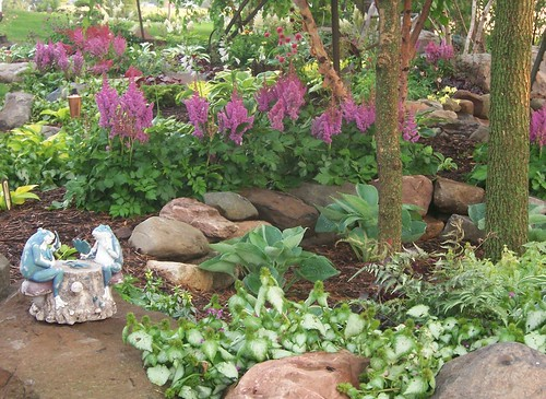 Hallson Gardens View topic Hosta plant combinations
