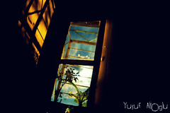 My Little Window  (yusuf_alioglu) Tags: world old flowers light shadow cloud moon plant flower color window colors clouds darkroom turkey dark pepper photography photo wooden rust iron flickr colours peace photographer shadows little earth space small pass panasonic moonlight ay magical mywindow glge oldwindow pepperplant fantasticlight tokat pencere ay supershot windowlatch woodenwindow littlewindow mydarkroom smallwindow mywinners picasa3 panasonicdmcls80 yusufaliolu yusufalioglu mylittlewindow fantasticwindow fantasticmoonlight inflowerwindow