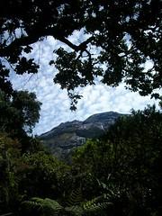 Summit beyond the Trees (Sobk) Tags: nature trek hiking walk extreme hike adventure borneo mountkinabalu sabah treking worldchallenge elevation40004500m altitude4095m summitmtkinabalu mountainscrocker