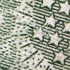 Macro Study: Dollar (detail)