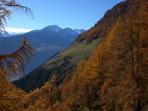 Herbststimmung in Richtung Westen zur Ortlergruppe