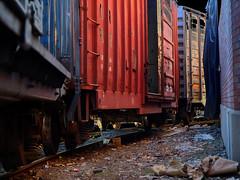 The Search For Peace (Professor Bop) Tags: railroad color train tracks rail soe freight mosca boxcars artcafe blueribbonwinner olympuse510 professorbop betterthangood