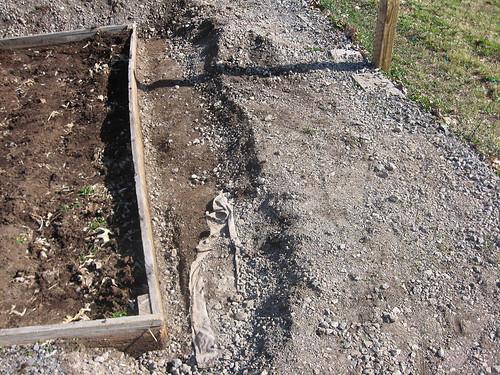 Enlarging Garden Beds 1