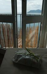 Our Surprise Gift from Debora and Oriana (Crumblin Down) Tags: trees windows sea vacation italy holiday signs water cookies clouds dinner coast mediterranean italia doors wine balcony horizon hike trail gift shutters terre manarola cinque corniglia tyrrhenian ondina arpaiu