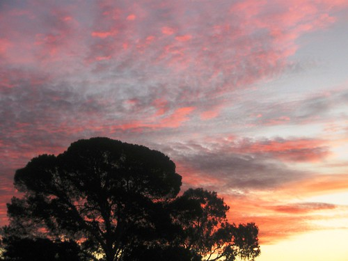 sunset 01.