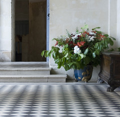 taking stock of what's to be (j image) Tags: door plant france floor bureau pot anticipation loirevalley chateaudusse
