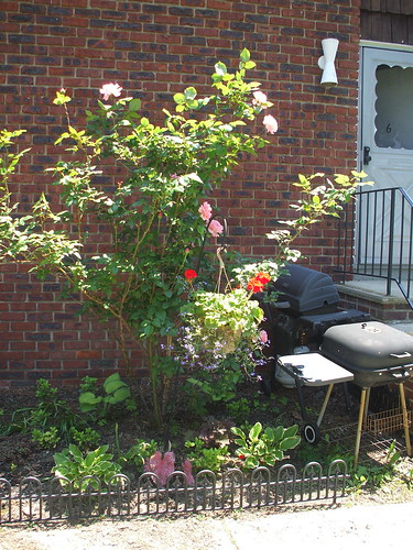 "front ""garden"""