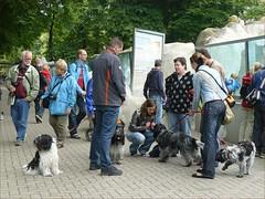 Rhenen-30 (jolingkoos) Tags: familie rhenen dierentuin ouwehand
