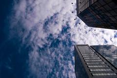 2009 (Liu Joey) Tags: sky