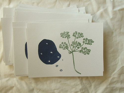 yarrow cards