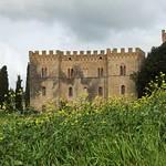 Villa near Borgo Finocchieto thumbnail