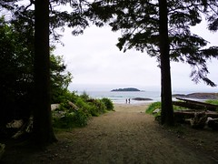 Chesterman Beach near Tofino on Vancouver Island 220 (formula80_ca) Tags: ocean trees canada beach nature water forest sand vancouverisland pacificocean tofino wilderness britshcolumbia westcoast oldgrowth