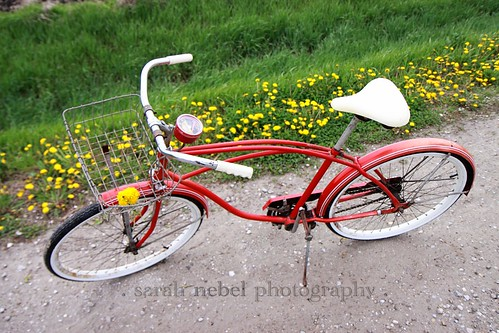 . the bike .