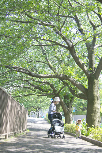 町田樹 画像16