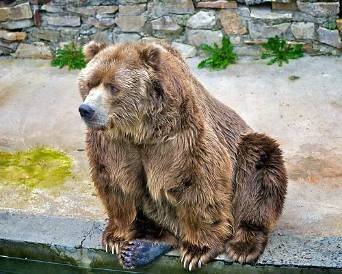 Rīga Zoo