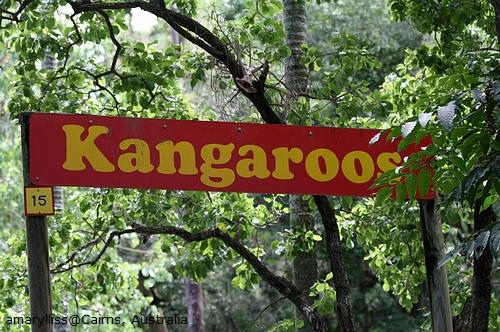 Australia2009-Day1 097