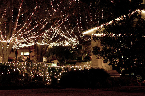 St. Auggie's Lights 17