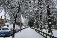 Snow 2 Feb