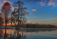 sunrise reflection (Marc Crumpler (Ilikethenight)) Tags: morning trees usa fog clouds sunrise canon reflections landscape bravo kayak southcarolina goosecreek blueribbonwinner fineartphoto supershot tamron1750 40d canon40d goldstaraward visionqualitygroup