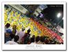 carnaval 2009, Gaviões da Fiel