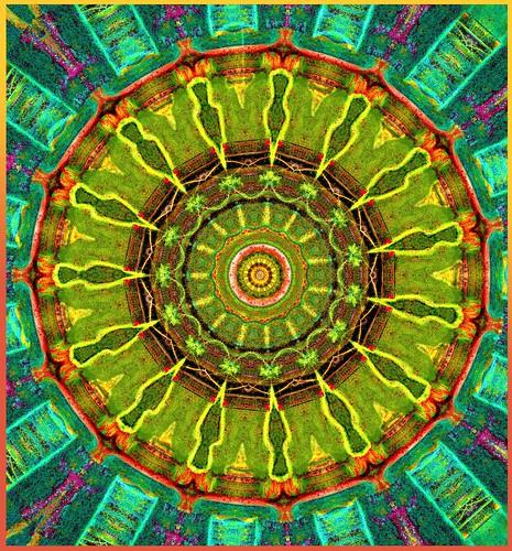 Nucleus Matrix .