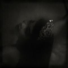 la danse de salomé (B.S. Wise) Tags: portrait art texture film vintage dark photography fan photo dance still stag noir sensual retro 1940s tilt publicdomain bradwise bradswise fauxvintage artisticphotos aod gothicsoul afterthought indreams theessenceofshe prelingerarchives lovelyandamazingvintageinspired ageofdecadence internationalgothic 2bdasest chercherlafemme♀ чёрныйквадрат womenartesthetic bswise fragmentsofkantiandoctrine monosepia dαяkportraits ~beyondportraiture—alittlefurther beyondartisticportraits don´tbeafraidofblurnovideos cesémotionsuniquesthesesingleemotions yournight chinesejoydance starringnoeltoy cbarportraitsandbodypartsonly
