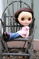 The Garden Chair