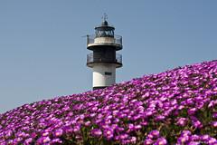Faro nuevo Isla Pancha (asturpaco) Tags: faro mar galicia lugo ribadeo islapancha