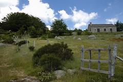 Vue sur le Mont Lozère (Lozère, Cévennes)