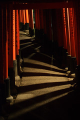 Fushimi Inari path light & shadows (. : Jonathan Fiamor : .) Tags: old travel wedding light portrait japan temple kyoto san francisco shrine photographer inari photos jonathan traditional culture nippon else everything japon nihon fushimi beautee jonathanfiamorsanfranciscowedding portraitandeverythingelsephotographerwwwfiamorcom fiamor wwwfiamorcom