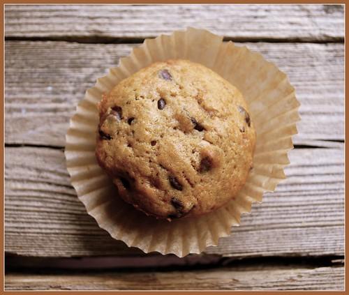 Espresso Chip Muffins solo