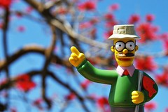 Look At Me (Srch) Tags: toy thesimpsons ned flanders monito nedflanders lossimpsons nikond60 abigfave 30daysoneobject