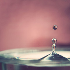 Happy Pretty Pink Tuesday (margyyy) Tags: 50mm waterdrop prettypinktuesday