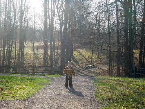 Buster Going Into The Sacred Grove