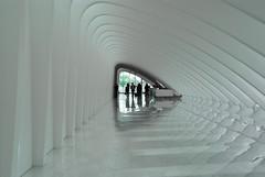 white hall (wgdavis) Tags: white wisconsin architecture hall arch milwaukeeartmuseum milwaukee organic santiagocalatrava artnoveau organicarchitecture youvsthebest thepinnaclehof tphofweek109