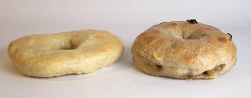 Bagel Comparison