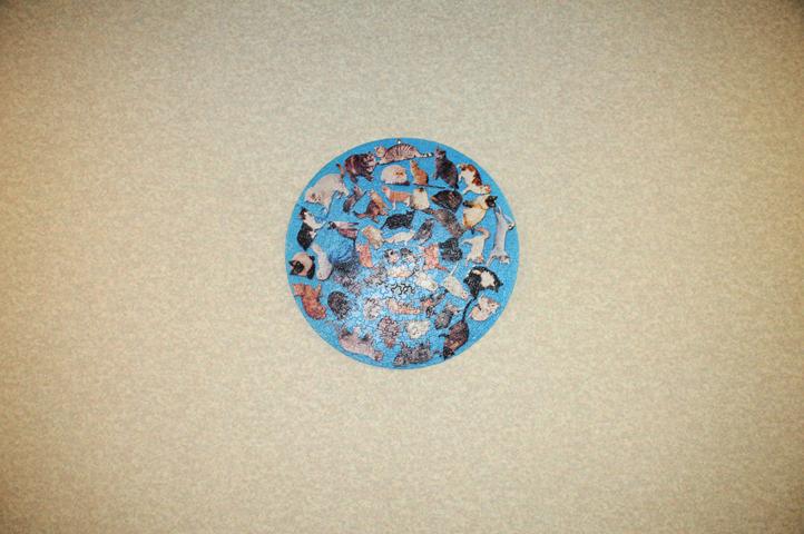 jigsaw puzzle_2904 web