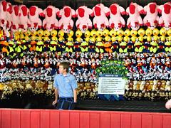 slow day (k.pat) Tags: carnival colors colorful vivid iowa stuffedanimals amusementpark prizes carni adventureland muffintin okoboji arnoldspark slowday notakers kpat