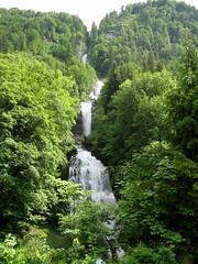 XXXX Reise durch die Schweiz : Giessbachfall ( Giessbachfälle - Wasserfall - Waterfall ) bei Giessbach im Kanton Berner Oberland im Kanton Bern in der Schweiz (chrchr_75) Tags: hurni christoph schweiz suisse switzerland svizzera suissa swiss kanton bern berne berna bärn chrchr chrchr75 chrigu chriguhurni 0906 wasserfall водопад 瀑布 vandfald waterfall cascade 滝 cascada waterval wodospad vattenfall vodopád slap giessbach giessbachfall giessbachfälle natur nature landschaft landscape wald forest berner oberland berneroberland albumwasserfälle albumwasserfällewaterfallsderschweiz chriguhurnibluemailch bergbach bach creek kantonbern hurni090606 albumregionthunhochformat thunhochformat hochformat susisa