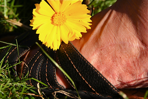 flower macro foot skin monday sandal clarks graft macromonday