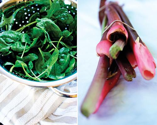spinach+rhubarb