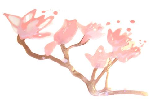 Illu_magnolia_small-500px