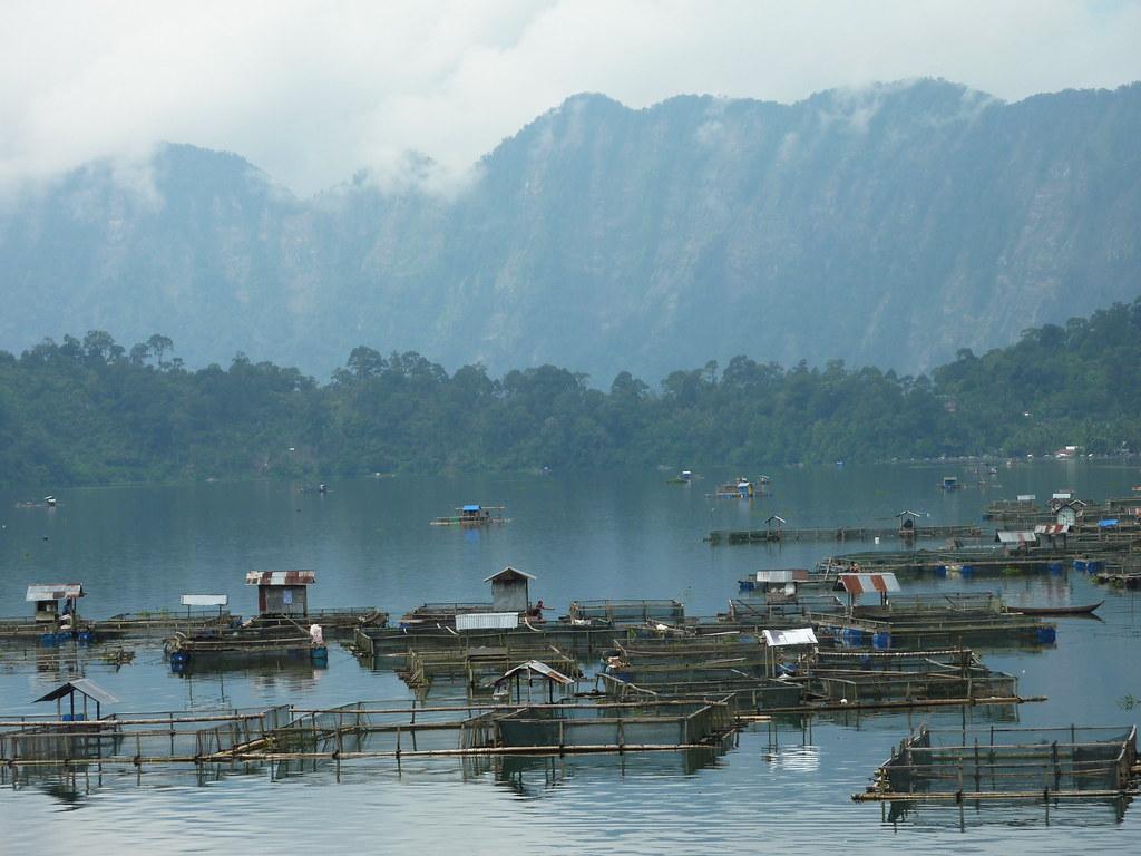 Sumatra-Lac Maninjau (115)