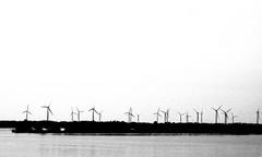 Wolfe Island Windfarm, Kingston Ontario (Sally E J Hunter) Tags: ontario blackwhite noiretblanc windmills kingston windfarm turbines renewableenergy moo1